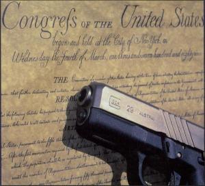 Gun & Constitution