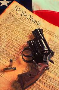 Gun & Constitution 2