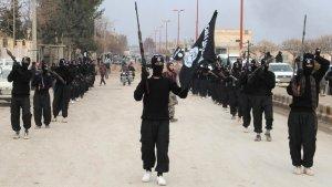 ISIS Combatants